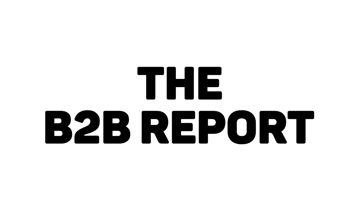Welcome to The B2B Report